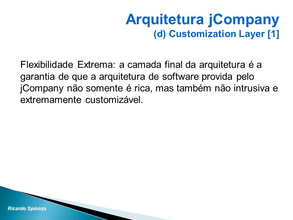 Arquitetura jCompany (d) Customization Layer [1]